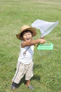 子供時代は、虫取りが好きな少年だったなあ